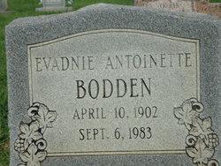 Evadnie Antoinette Bodden