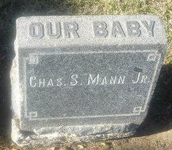 Charles S. Mann, Jr.