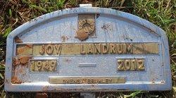 Joy <i>Snyder</i> Landrum