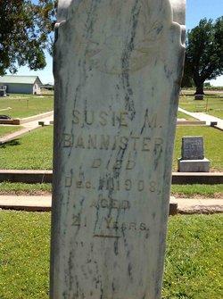 Susan M Susie <i>Harlan</i> Bannister