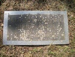 Virginia S. Alcorn