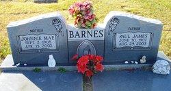 Paul James Barnes