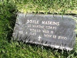 Doyle Ray Haskins