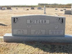 Joyce Marie <i>Perdue</i> Butler