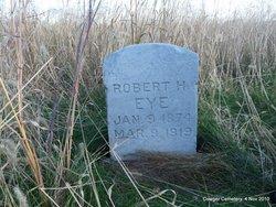 Robert Harvey Eye