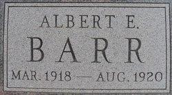 Albert E Barr