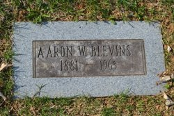 Aaron Walter Blevins