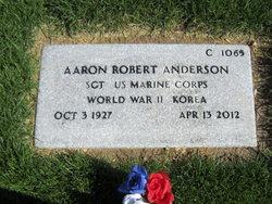 Aaron Robert Anderson