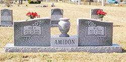 Ida Elizabeth <i>Copeland</i> Amidon
