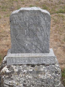 James T. Allison