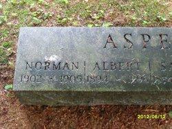 Albert Asper