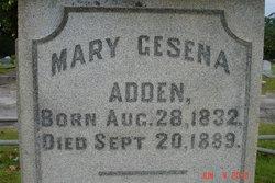 Mary Cesena Adden