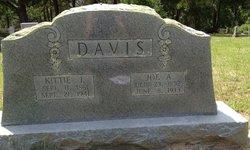 Keziah Jane Kittie <i>Reed</i> Davis