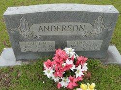Sarah E Sallie <i>Morris</i> Anderson