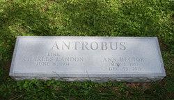 Ann <i>Rector</i> Antrobus