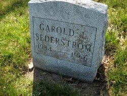 Garold L Sederstrom