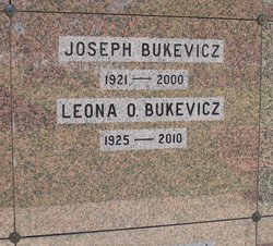 Joseph J Bukevicz