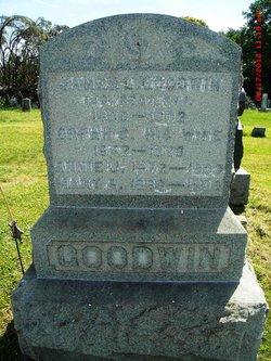 Mary A Goodwin