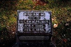 William Mason Palmer