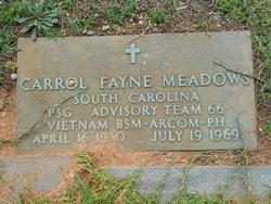 Carroll Fayne Meadows