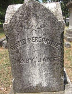 David Peregrine Fulton