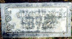 William Hugh Rice