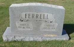 Carrie Lona <i>Casto</i> Ferrell