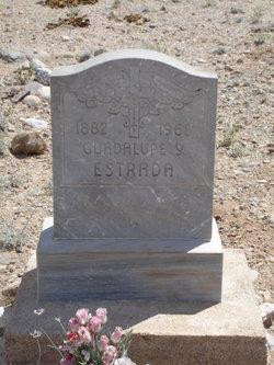 Guadalupe Y Estrada