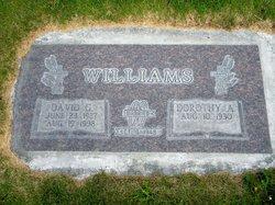 David G Williams