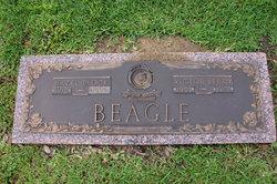Hazel <i>Block</i> Beagle