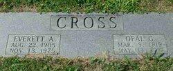 Opal Grace <i>Villers</i> Cross Bobbert