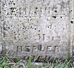 Emanuel D Hepler