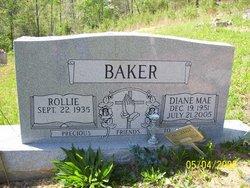 Diane Mae <i>??</i> Baker