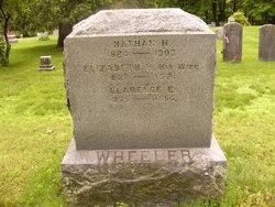 Edith Anna <i>Wheeler</i> George