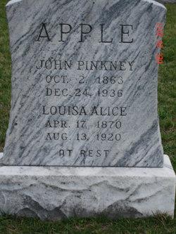 John Pinkney Apple