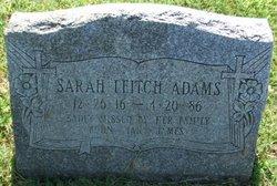 Sarah Ieitch Adams