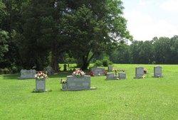 Mason Cemetery (Spring Hill Twp)