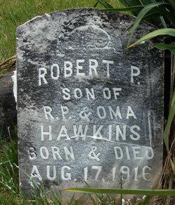 Robert P. Hawkins
