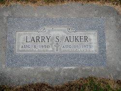 Larry S Auker
