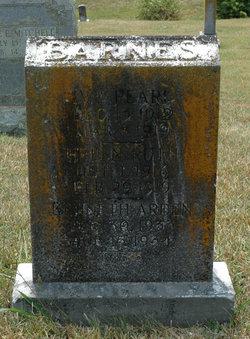 Kenneth Ardan Barnes