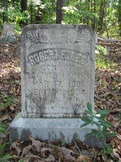 Robert E. Lee Johnson