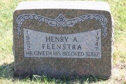Henry A Feenstra