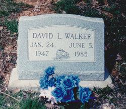 David L. Walker