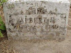 Albert Francis McMahon
