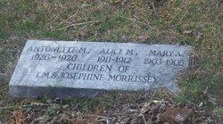 Alice M Morrissey