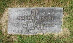 Arthur R. Adams
