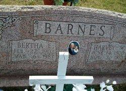 Bertha Elsada <i>Broyles</i> Barnes