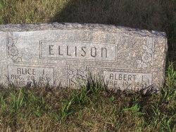 Alice J <i>Driesel</i> Ellison