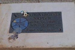 Dixie Virginia Irene Napier