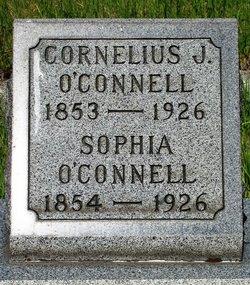 Cornelius J O'Connell